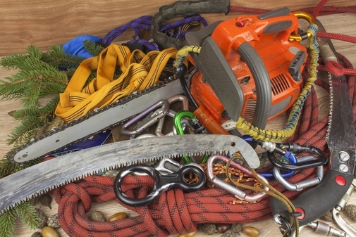 Picture of climbing gear that is used for removal and trimming of trees in Kansas City, KS